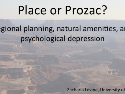 Place or Prozac: Planning, environment, and psychological depression